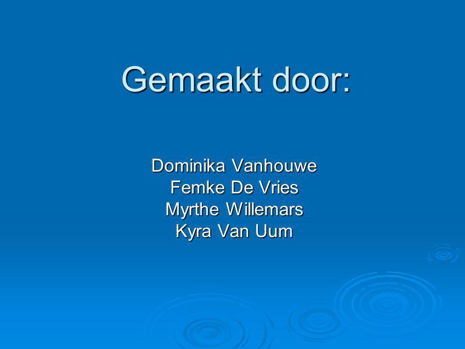 Dominika Vanhouwe Femke De Vries Myrthe Willemars Kyra Van Uum