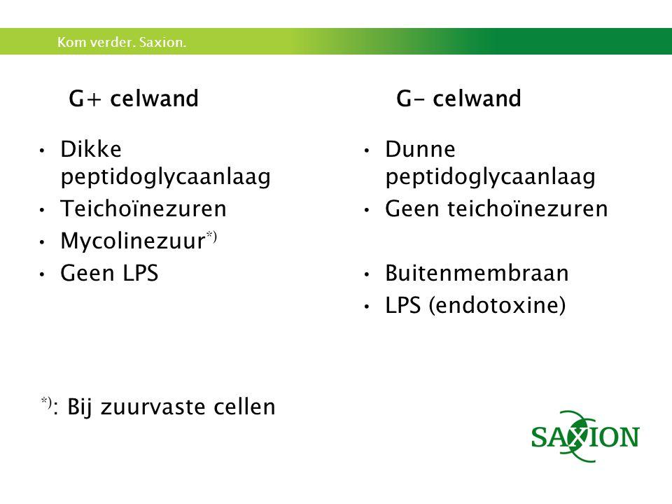 G+ celwand G- celwand Dikke peptidoglycaanlaag. Teichoïnezuren. Mycolinezuur*) Geen LPS. Dunne peptidoglycaanlaag.