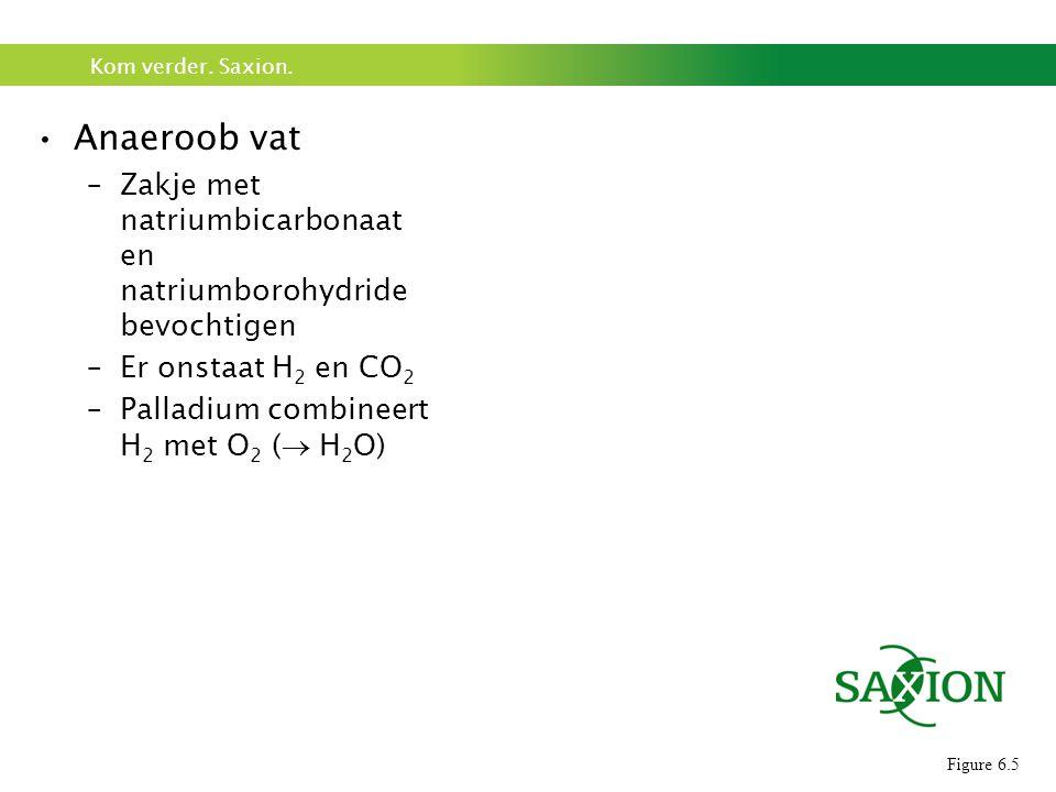 Anaeroob vat Zakje met natriumbicarbonaat en natriumborohydride bevochtigen. Er onstaat H2 en CO2.