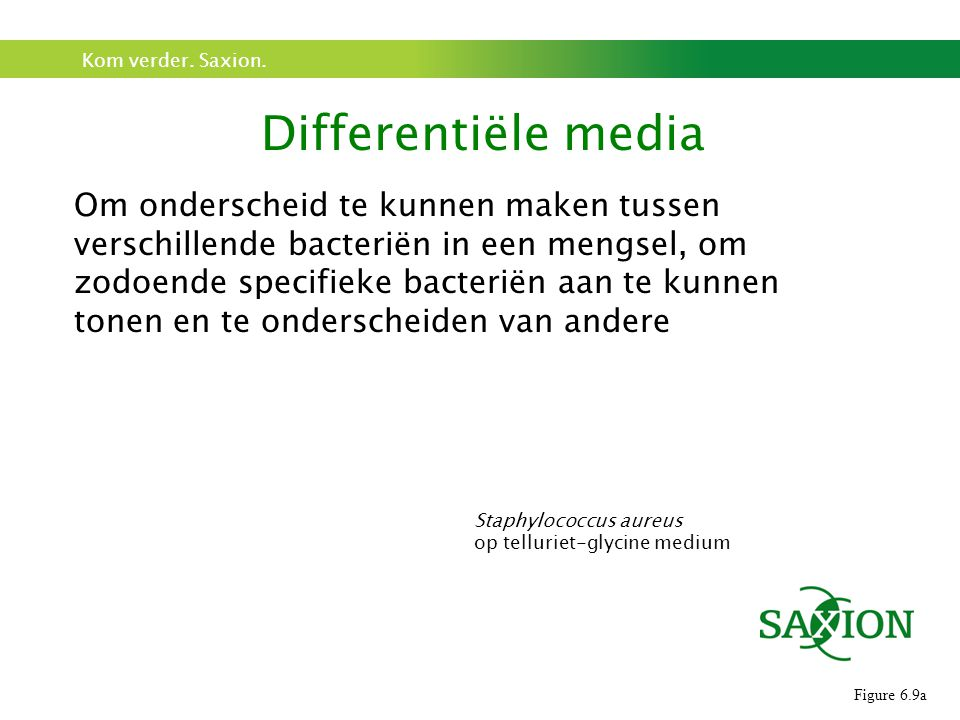 Differentiële media