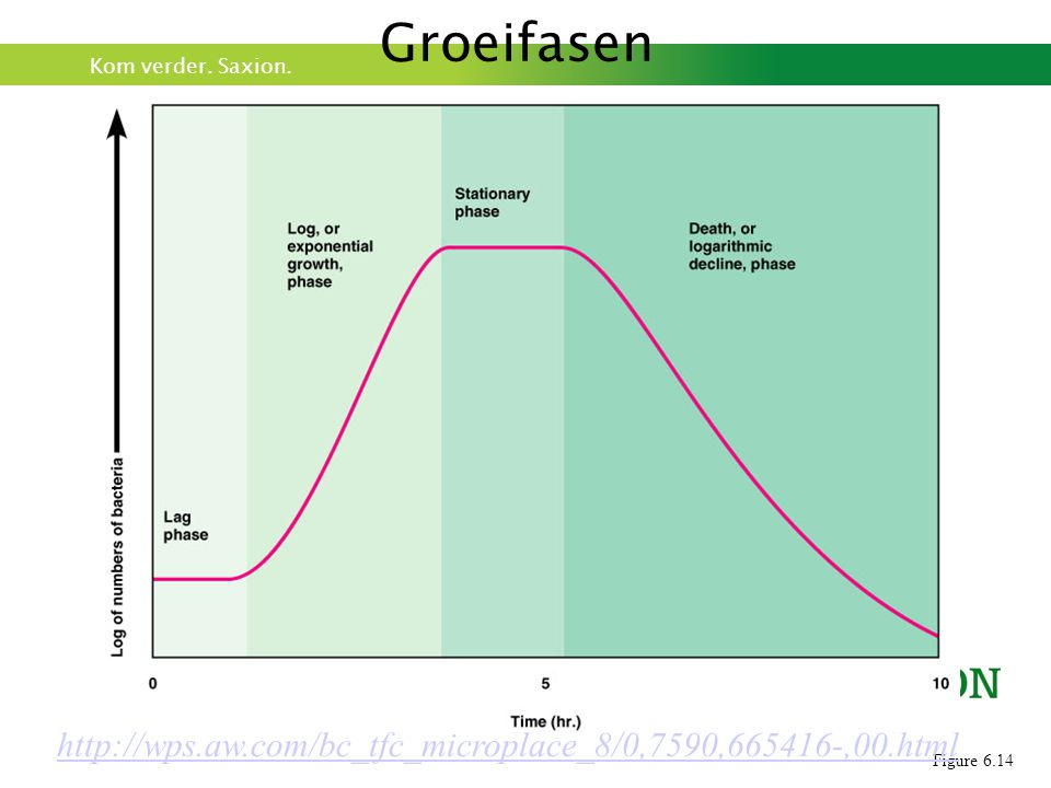 Groeifasen http://wps.aw.com/bc_tfc_microplace_8/0,7590,665416-,00.html Figure 6.14