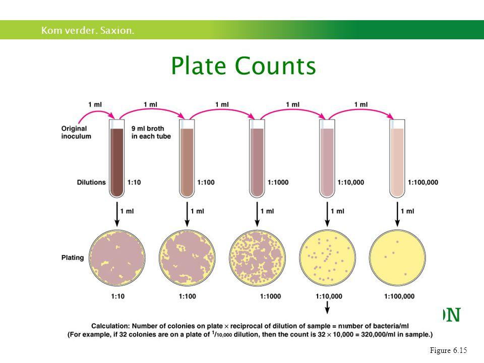 Na incubatie: tel aantal kolonies op platen met 25-250 kolonies (CFU/KVE)