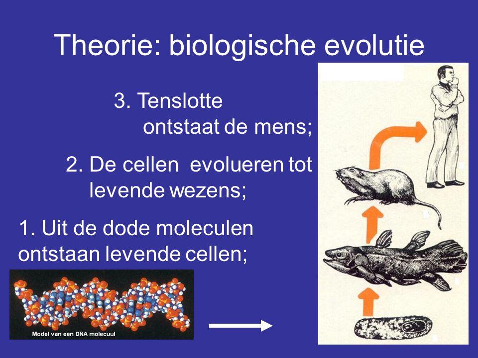 Theorie: biologische evolutie