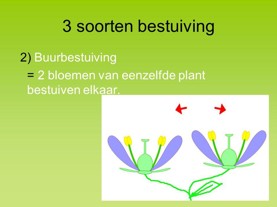 3 soorten bestuiving 2) Buurbestuiving