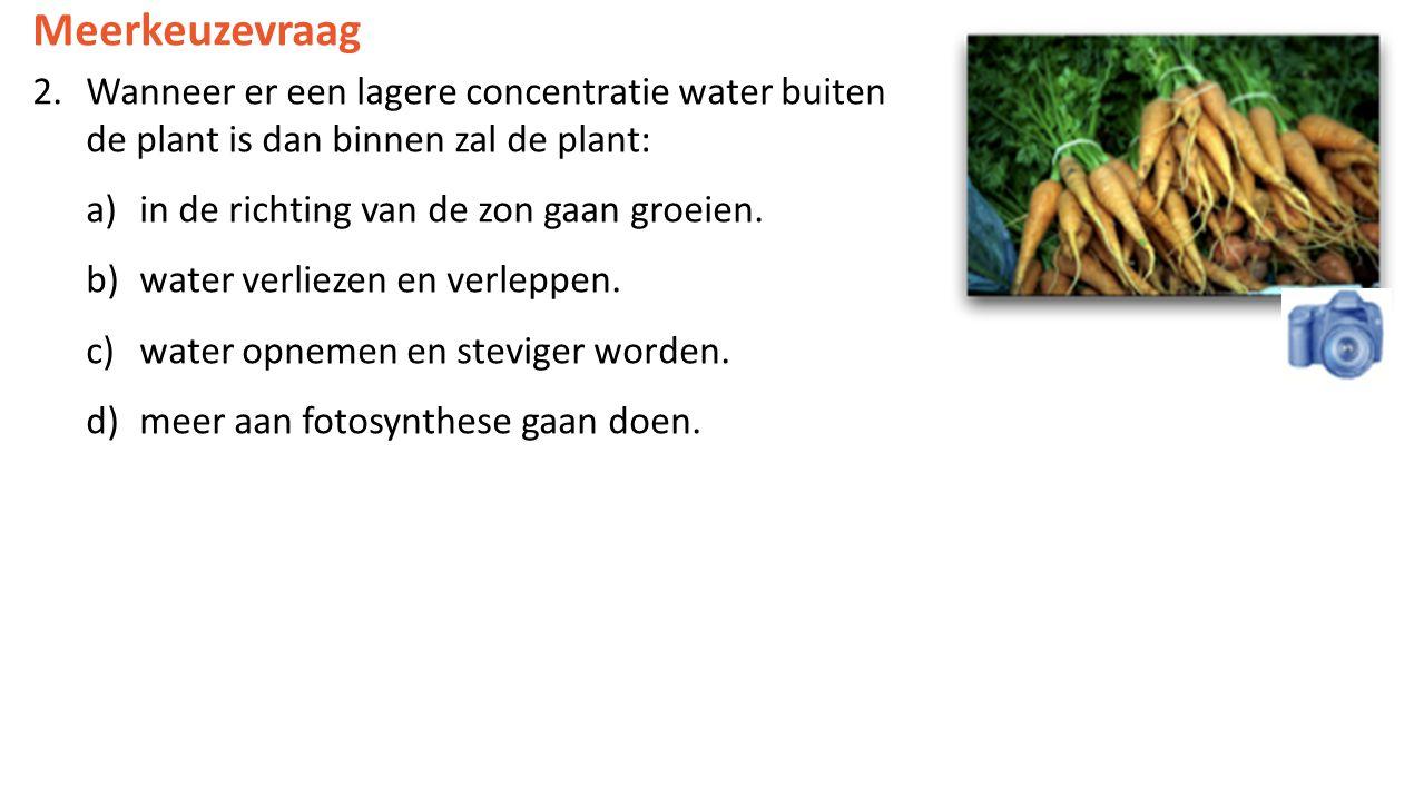 Meerkeuzevraag Wanneer er een lagere concentratie water buiten de plant is dan binnen zal de plant: