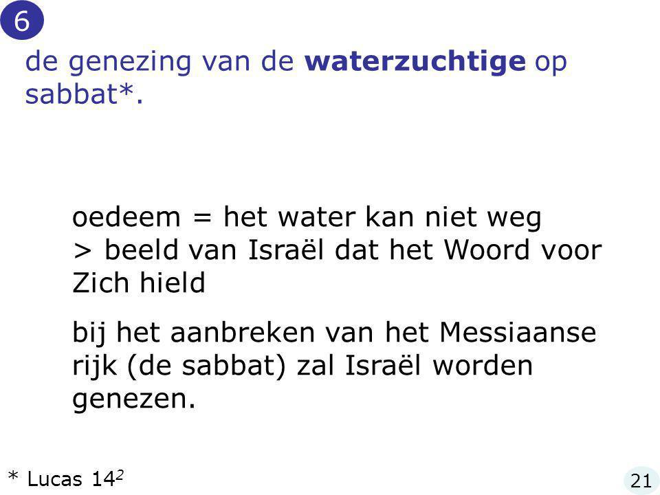 de genezing van de waterzuchtige op sabbat*.