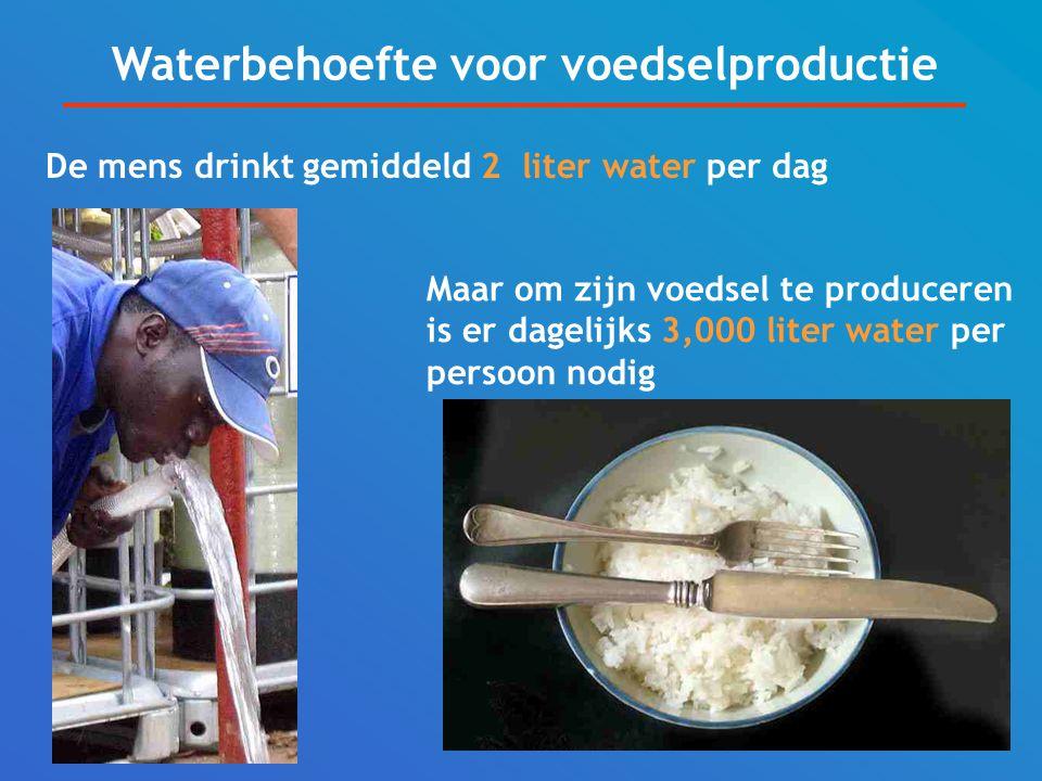 Waterbehoefte voor voedselproductie