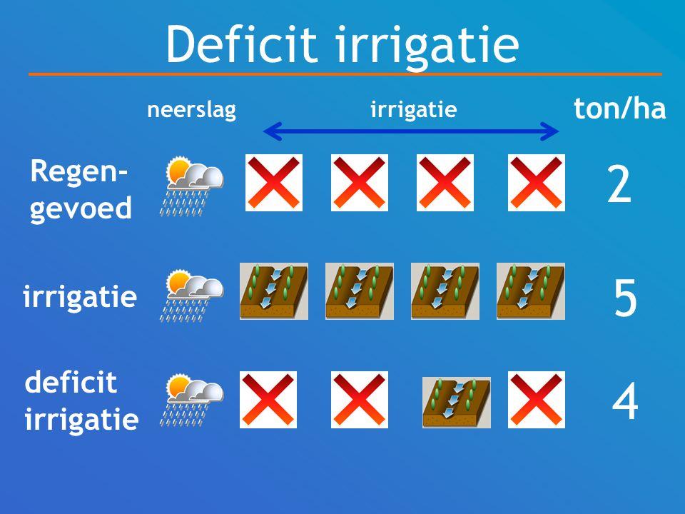 Deficit irrigatie 2 5 4 ton/ha Regen-gevoed irrigatie deficit