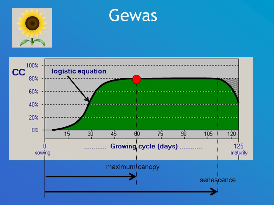 Gewas logistic equation maximum canopy senescence