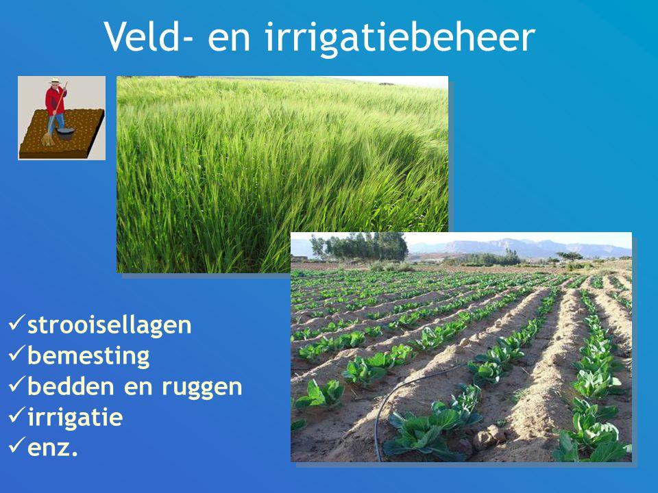 Veld- en irrigatiebeheer