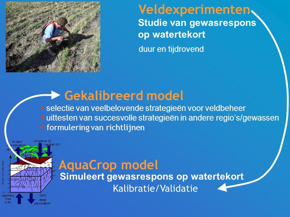 Veldexperimenten Gekalibreerd model AquaCrop model