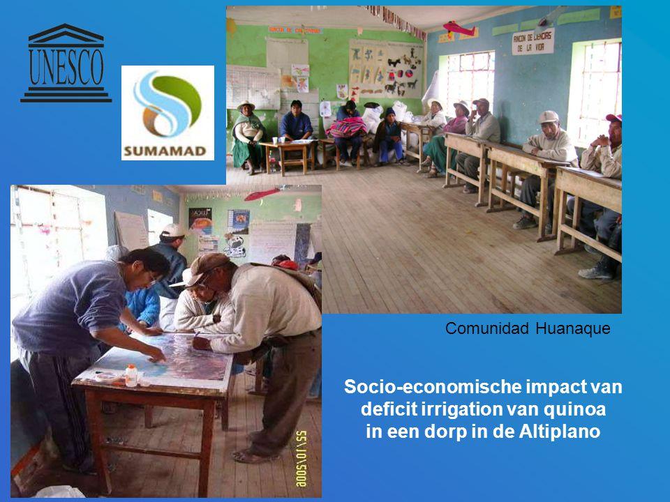 Socio-economische impact van deficit irrigation van quinoa