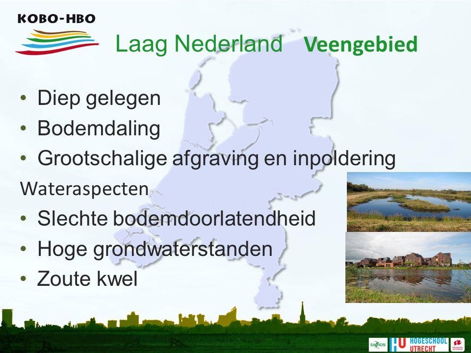 Laag Nederland Veengebied