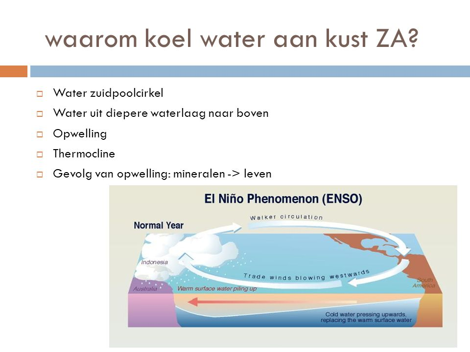 waarom koel water aan kust ZA