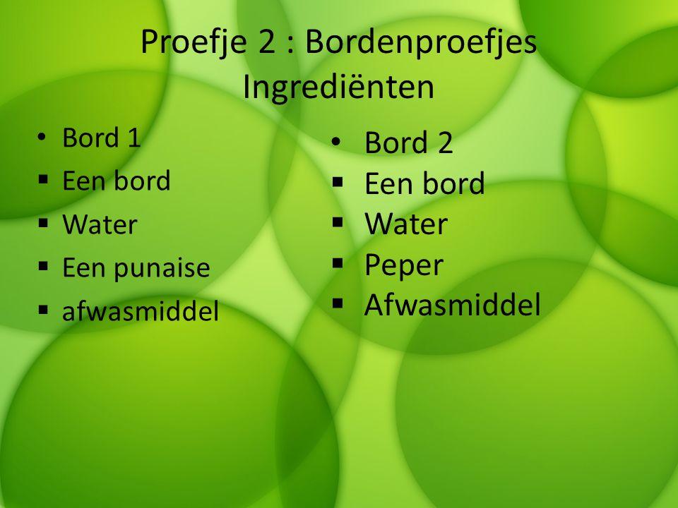 Proefje 2 : Bordenproefjes Ingrediënten