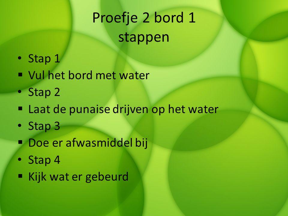 Proefje 2 bord 1 stappen Stap 1 Vul het bord met water Stap 2