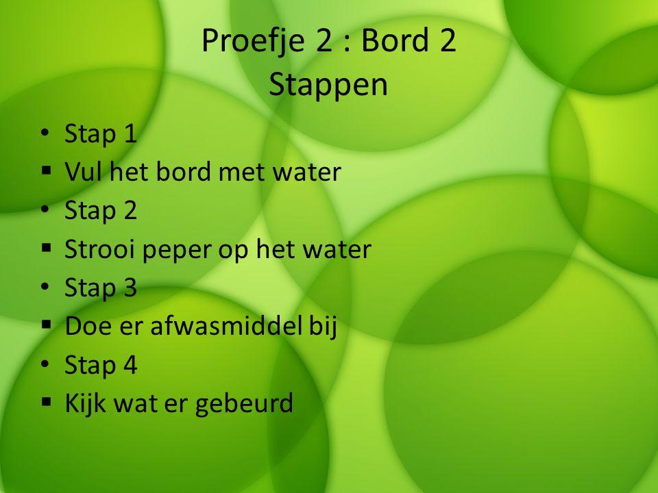 Proefje 2 : Bord 2 Stappen Stap 1 Vul het bord met water Stap 2