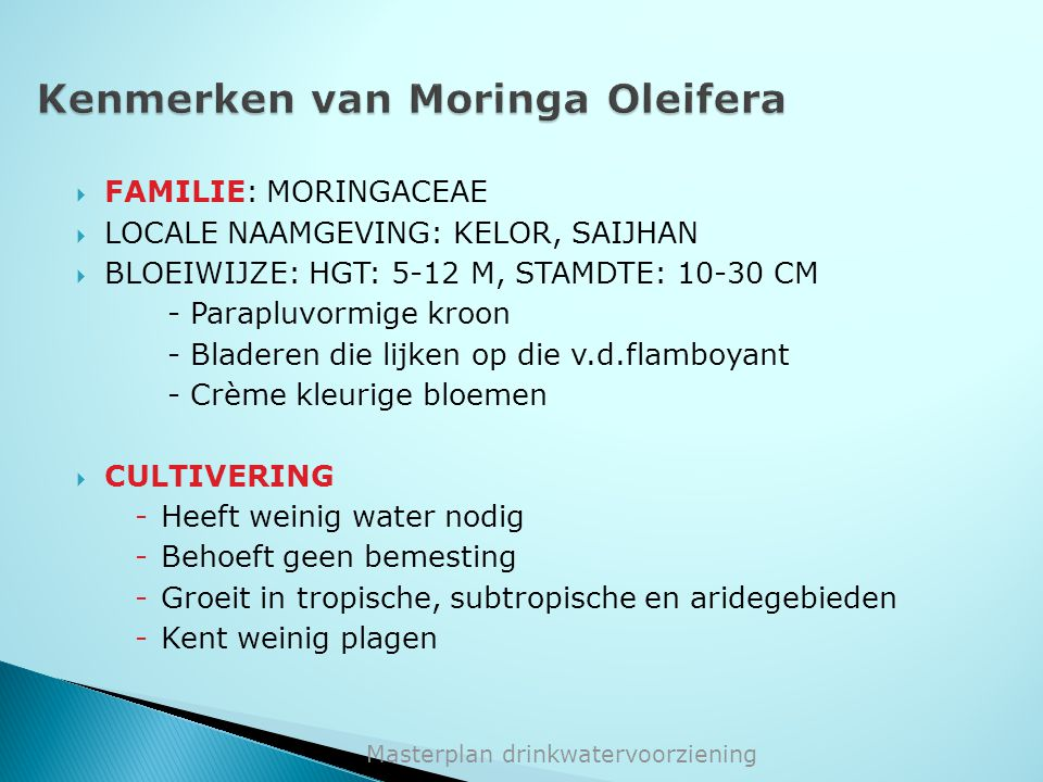 Kenmerken van Moringa Oleifera