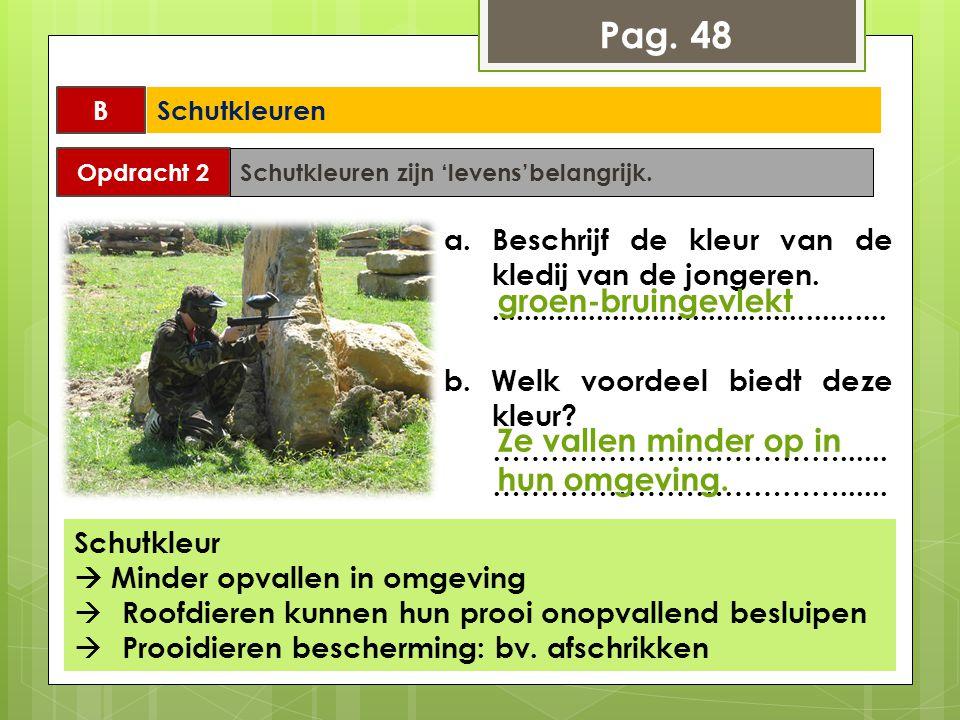Pag. 48 groen-bruingevlekt Ze vallen minder op in hun omgeving.