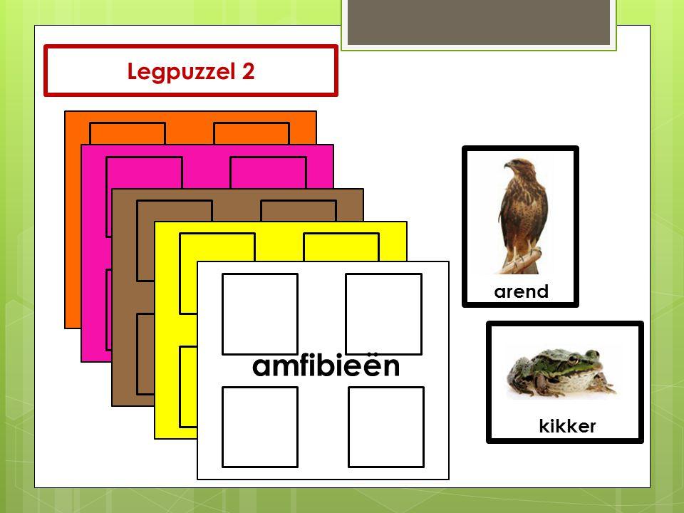 zoogdieren reptielen vogels vissen amfibieën