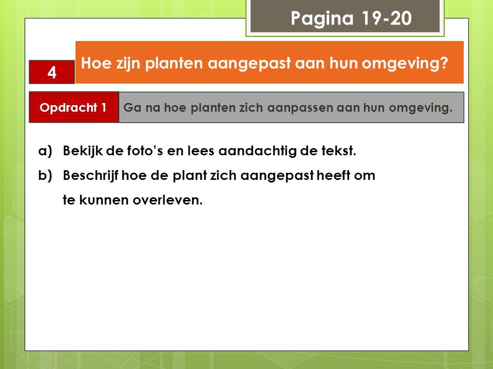Pagina 19-20 4 Hoe zijn planten aangepast aan hun omgeving