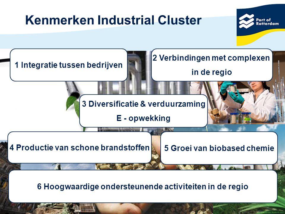Kenmerken Industrial Cluster