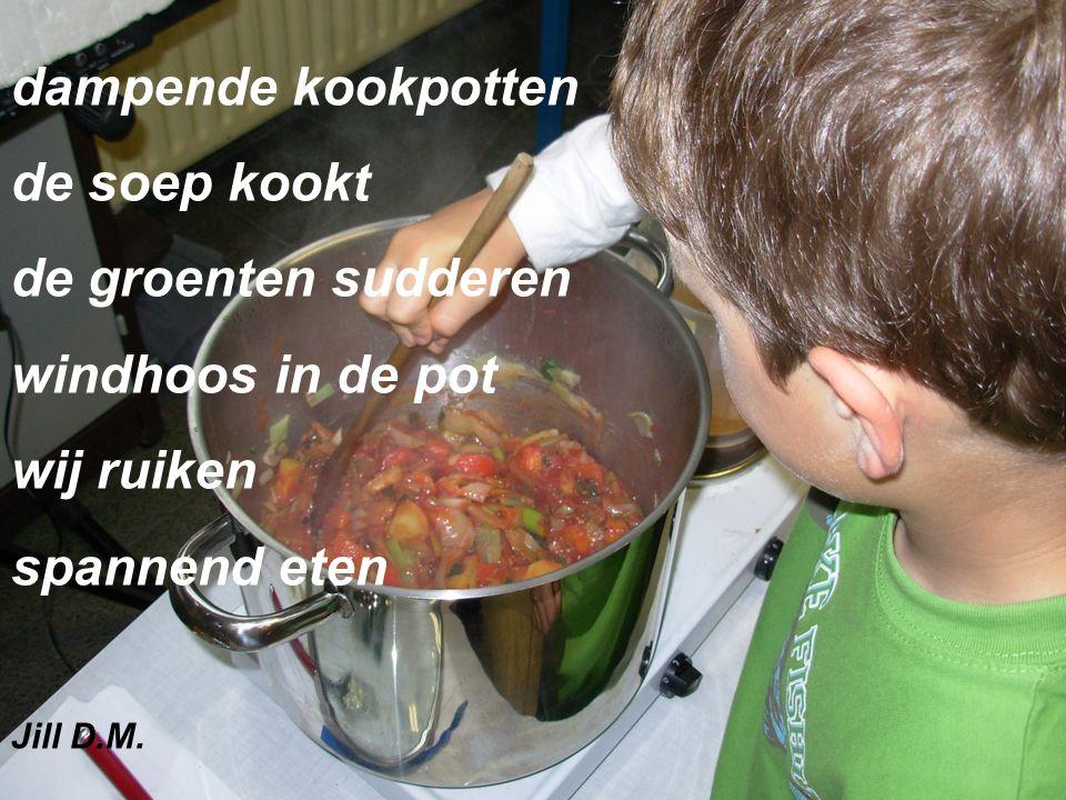 dampende kookpotten de soep kookt de groenten sudderen