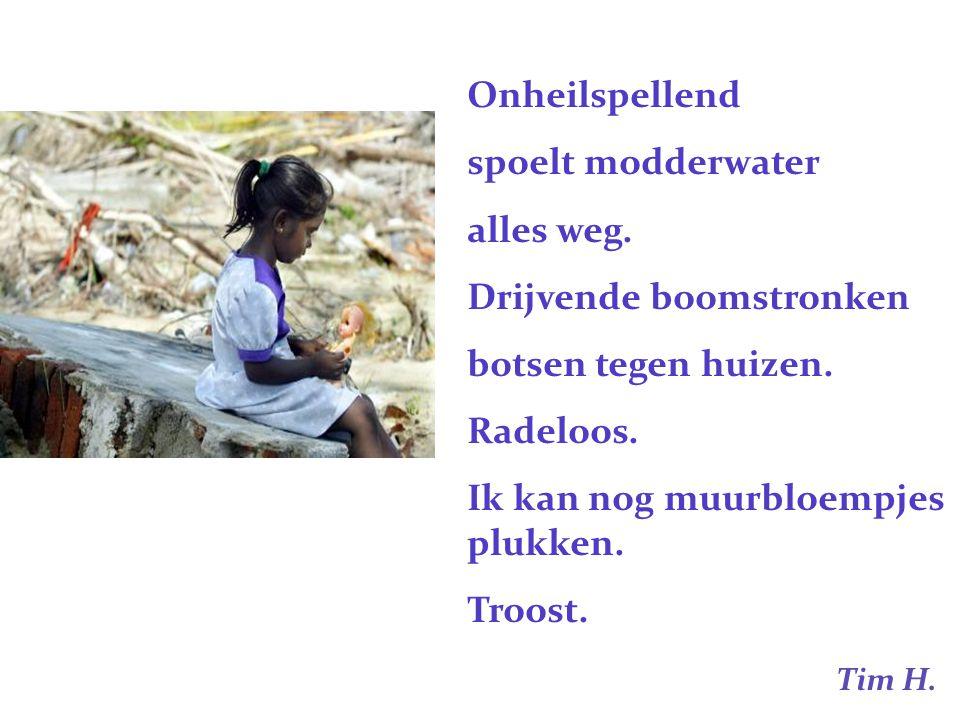 Onheilspellend spoelt modderwater. alles weg. Drijvende boomstronken. botsen tegen huizen. Radeloos.