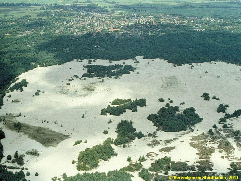 Hoogteligging beïnvloedt de beschikbaarheid van water, en daarmee de vegetatie: kaal op de stuifzanden, bos op de flanken van de stuwwal en grasland op de laag gelegen delen in de Gelderse Vallei.