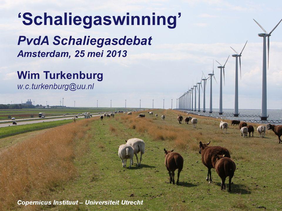 'Schaliegaswinning' PvdA Schaliegasdebat Wim Turkenburg