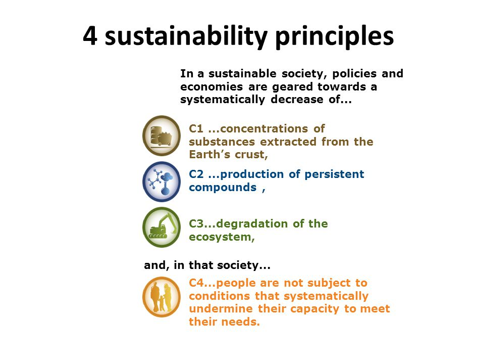 4 sustainability principles