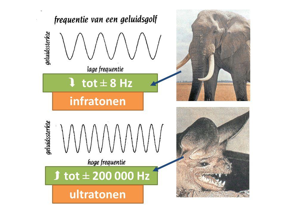  tot ± 8 Hz infratonen  tot ± 200 000 Hz ultratonen