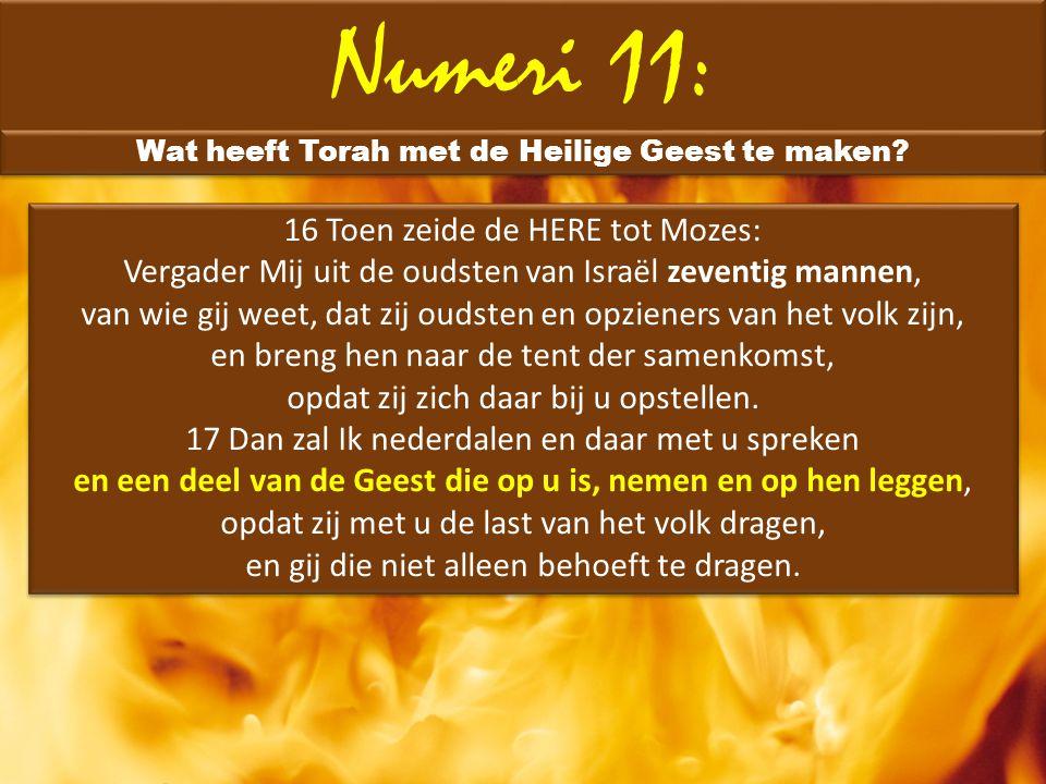 Numeri 11: 16 Toen zeide de HERE tot Mozes: