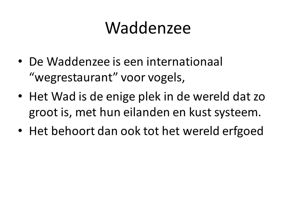 Waddenzee De Waddenzee is een internationaal wegrestaurant voor vogels,