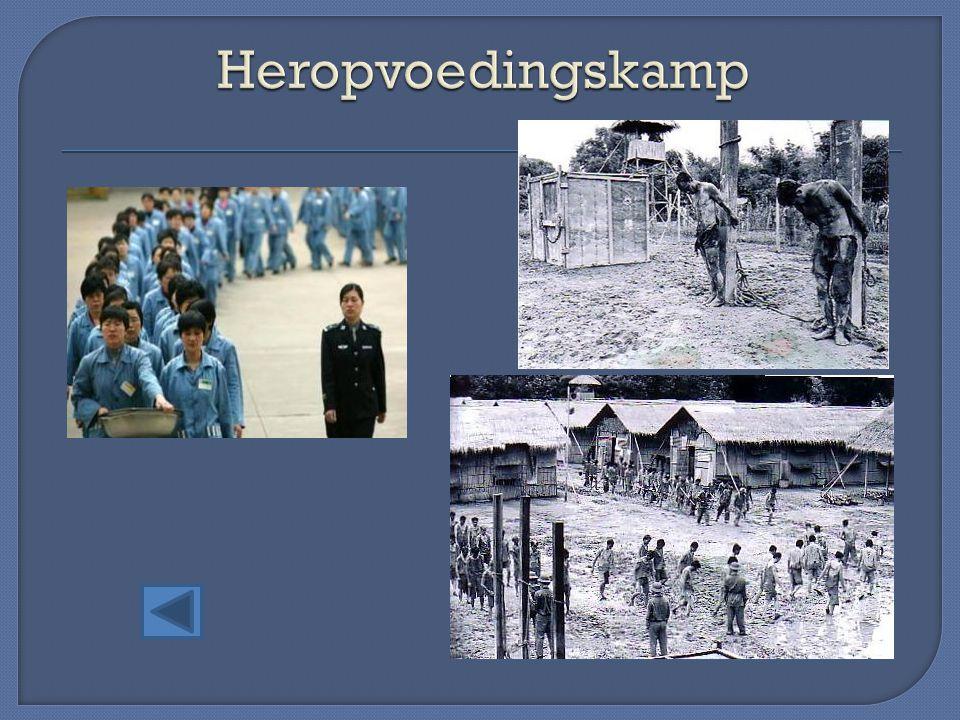 Heropvoedingskamp