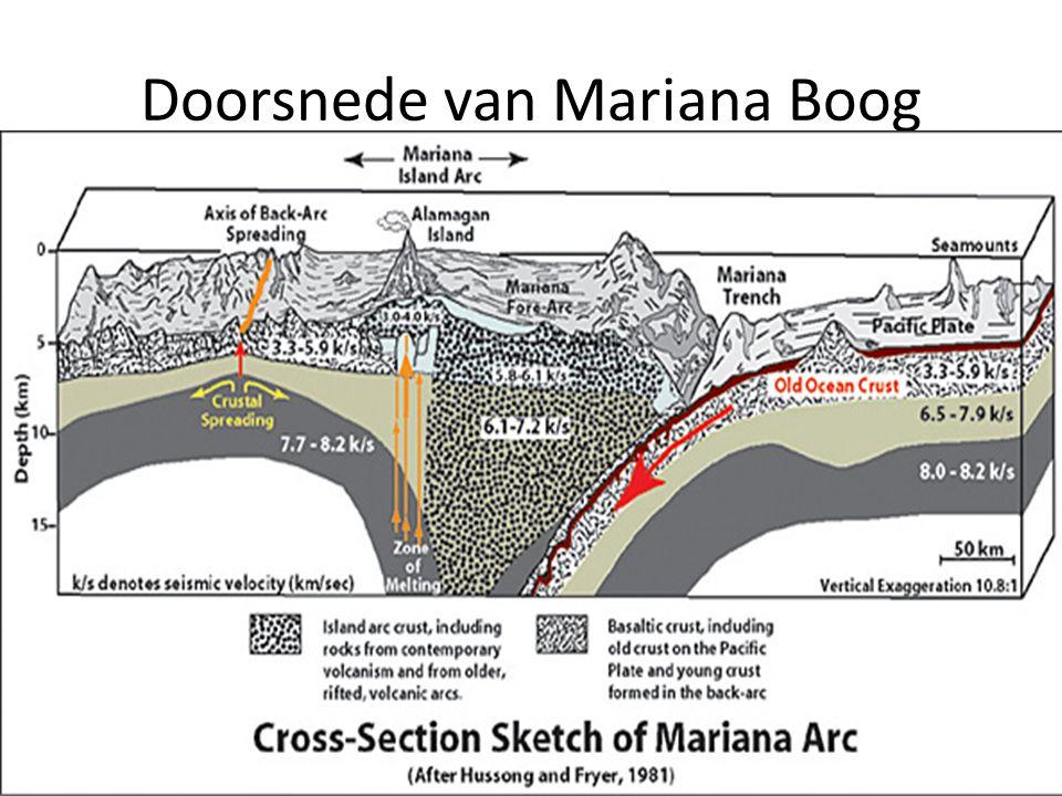 Doorsnede van Mariana Boog