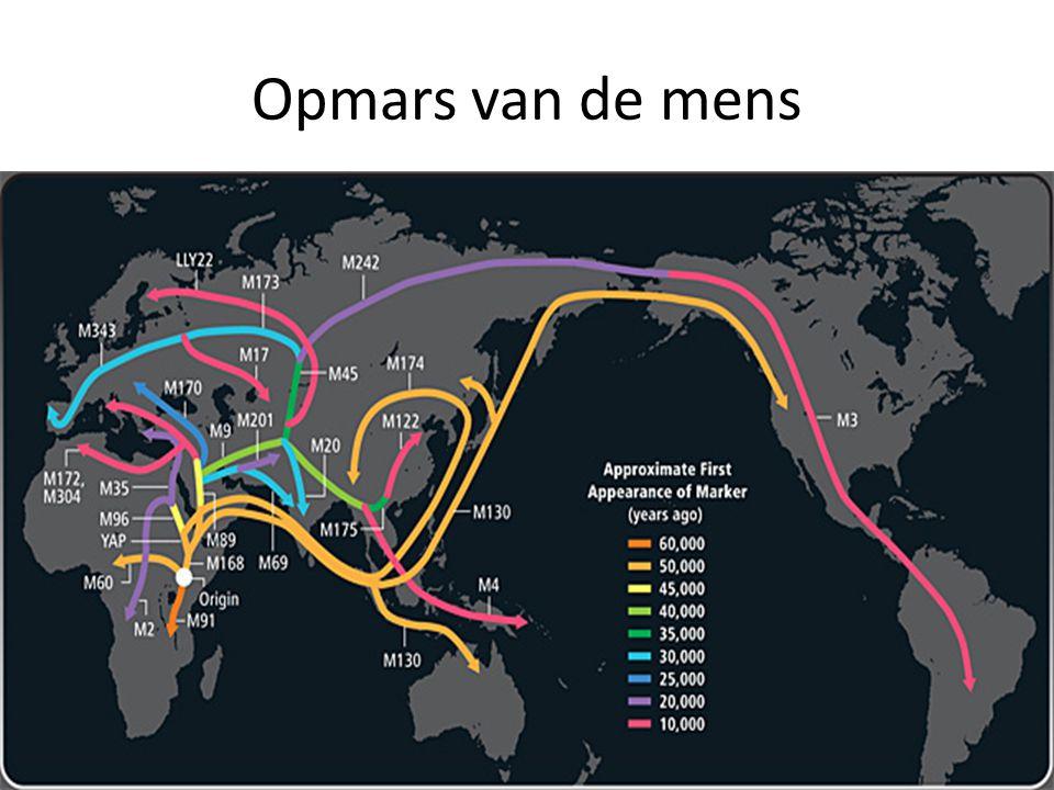 Opmars van de mens Geel 50.000;blauw 30.000 paars 20.000 en rood 10.000 jaar gelden