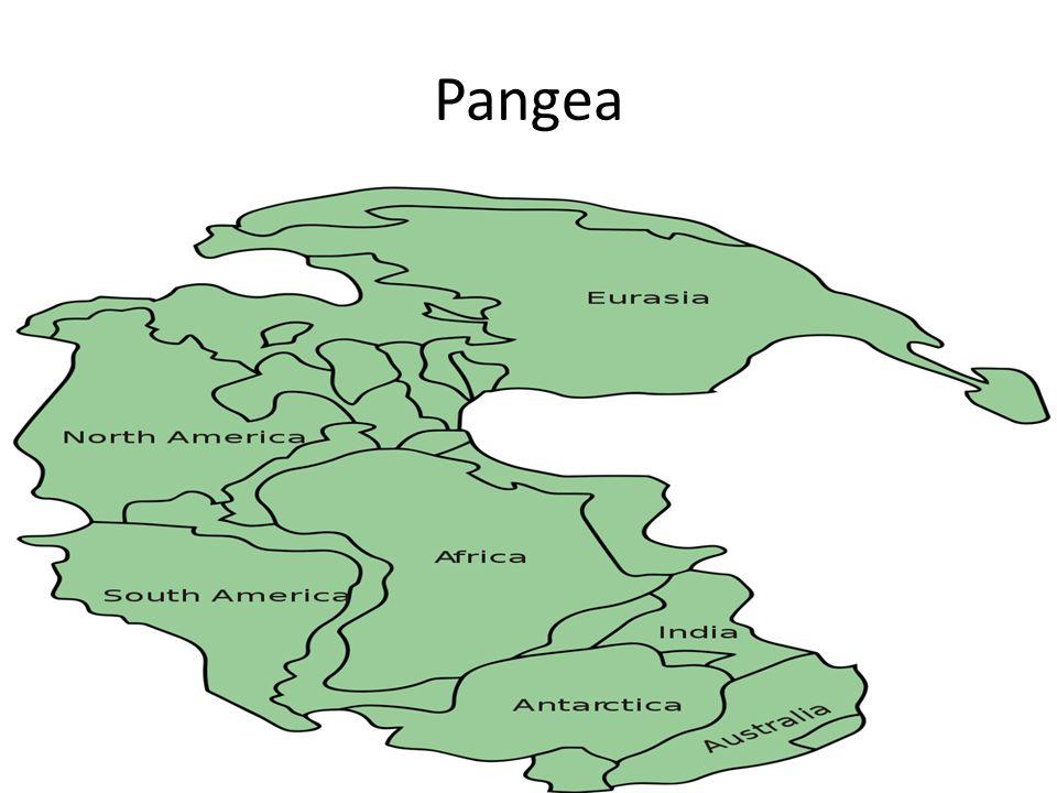 Pangea Zo zou het begonnen zijn! Wat was er buiten