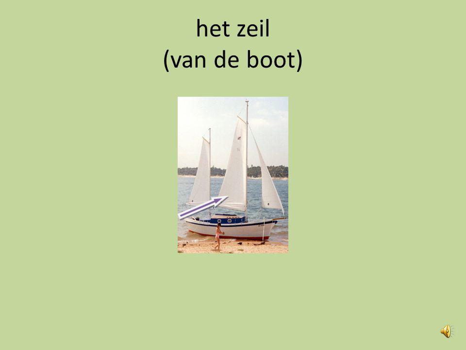 het zeil (van de boot)