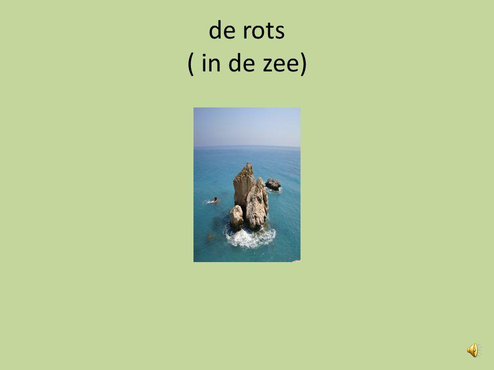 de rots ( in de zee)