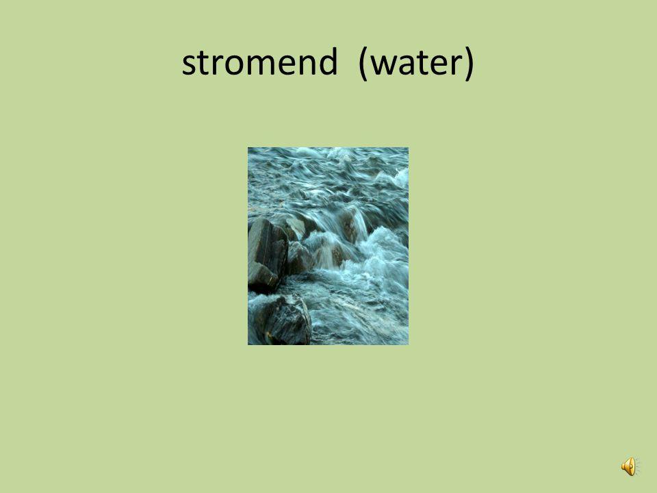 stromend (water)