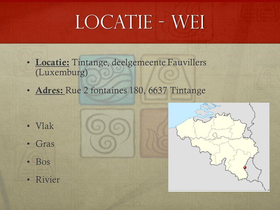 Locatie - Wei Locatie: Tintange, deelgemeente Fauvillers (Luxemburg)