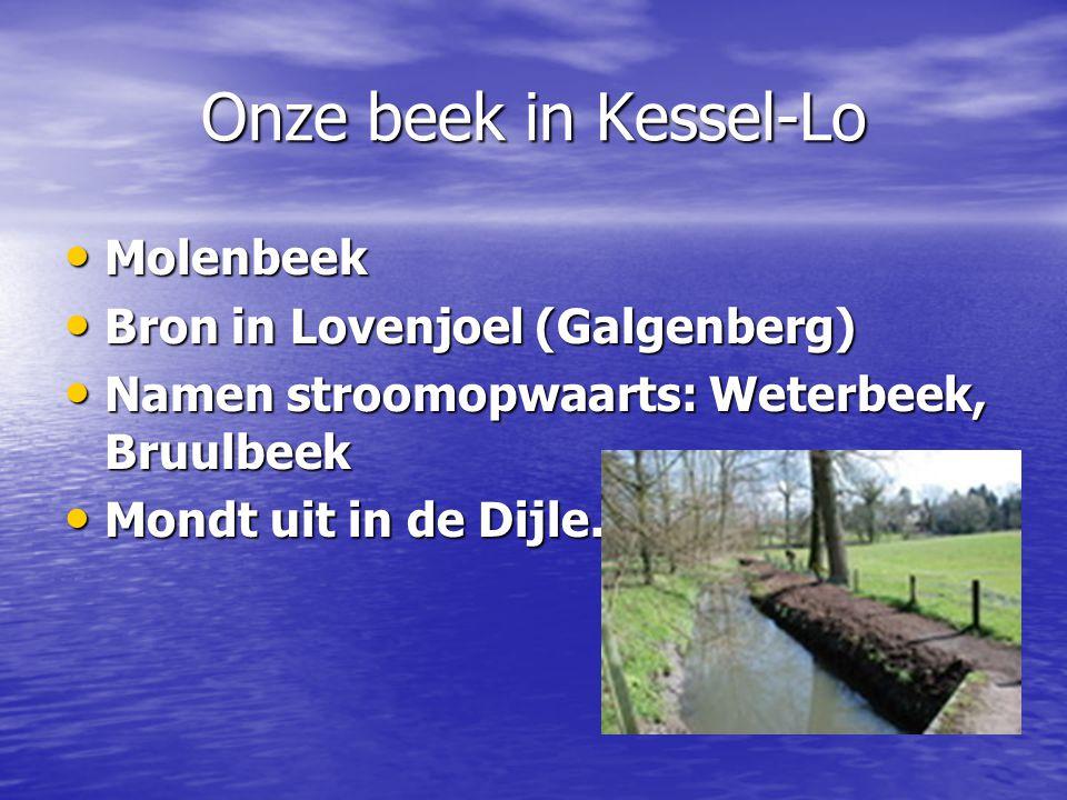 Onze beek in Kessel-Lo Molenbeek Bron in Lovenjoel (Galgenberg)