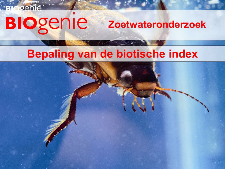 Bepaling van de biotische index