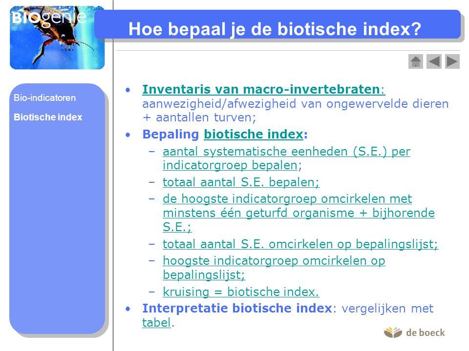 Hoe bepaal je de biotische index