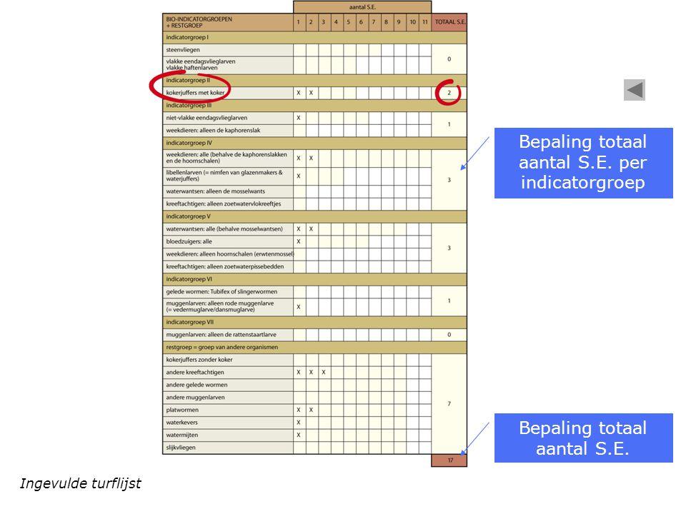 Bepaling totaal aantal S.E. per indicatorgroep