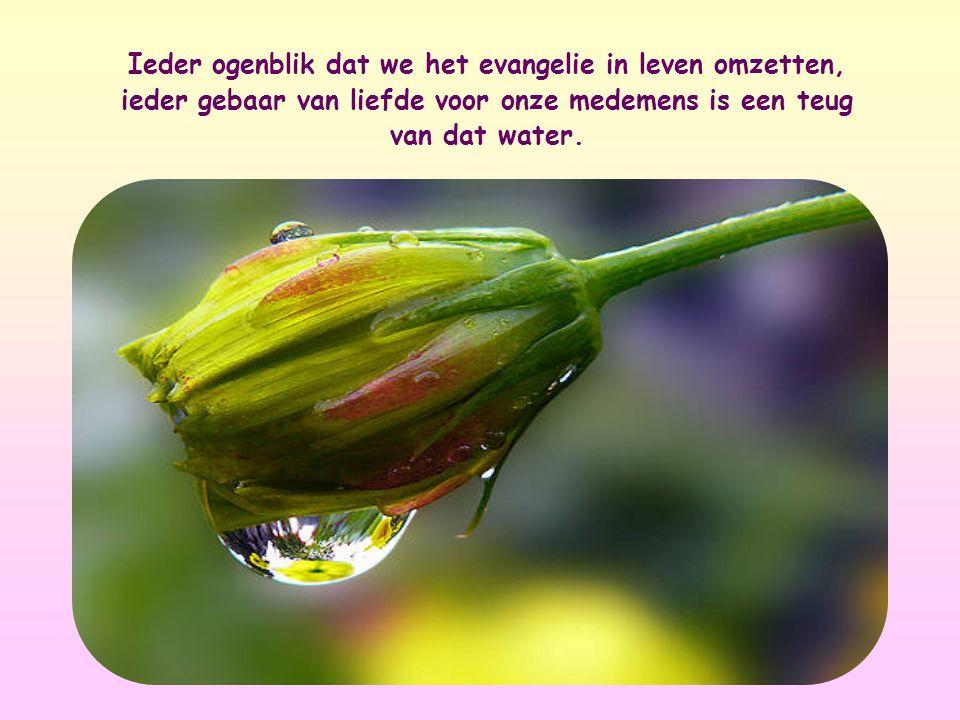 Ieder ogenblik dat we het evangelie in leven omzetten, ieder gebaar van liefde voor onze medemens is een teug van dat water.
