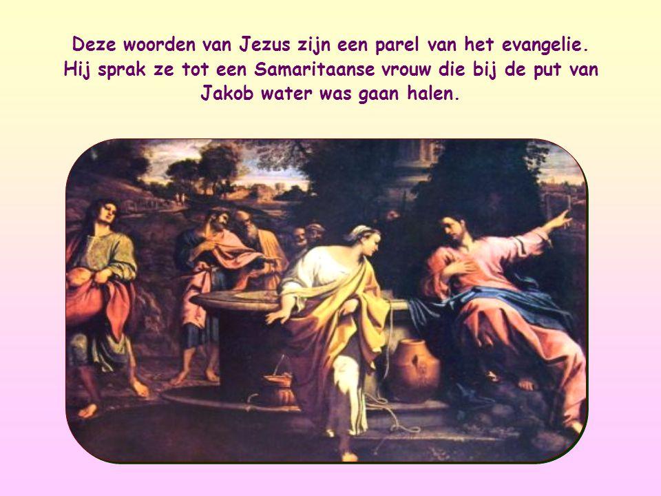 Deze woorden van Jezus zijn een parel van het evangelie