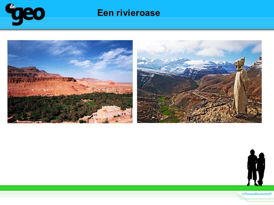 Een rivieroase Beeld: K.P. van Wijk Docent: