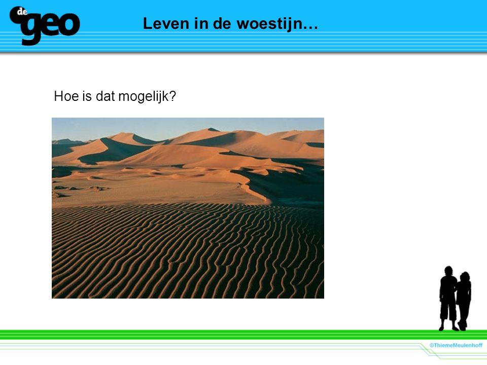 Leven in de woestijn… Hoe is dat mogelijk
